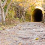 トンネルへと続く廃線